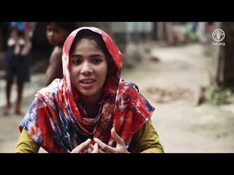 FAO Working to Improve Food Security and Nutrition in Bangladesh